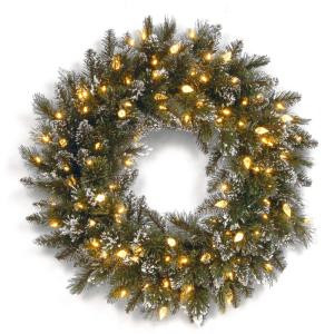 Glittery Bristle Pine 24 in. Artificial Wreath with Warm White LED Lights
