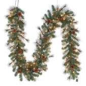 9 ft. Pre-Lit LED Alexander Pine Artificial Christmas Garland x 165 Tips with 100 UL Plug-In Outdoor Warm White Lights