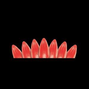 50-Light LED C3 Crystal Red Light Set
