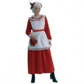 Classic Women's Mrs. Claus Costume