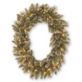 30 in. Sparkling Pine Oval Artificial Wreath with 50 Clear Lights